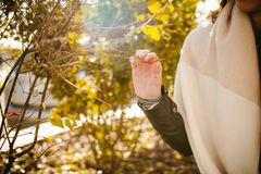 Portrait of young woman walking outdoors on warm autumn afternoon Royalty Free Stock Photography