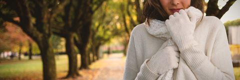 Composite image of portrait of young woman in warm clothing. Portrait of young woman in warm clothing against footpath amidst trees at park Royalty Free Stock Image