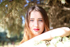 Portrait of a young woman who poses on the background  spruce Royalty Free Stock Photo