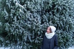 Portrait of a young woman in a winter forest near a spruce stock image