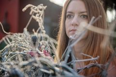 Portrait of a young woman in winter in garden on cast iron fence with frost hoar frost stock photo