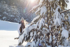 Portrait of a young woman in winter park Stock Photography
