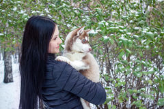 Portrait of a young women with a husky puppies Stock Photography