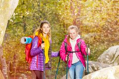 Hikers with trekking sticks at sunny day outdoors Royalty Free Stock Photo