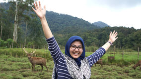 Portrait of young women in wildlife with deer Stock Photos