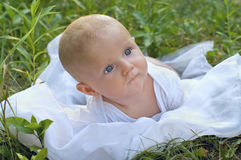 Portraite of baby on nature Stock Images