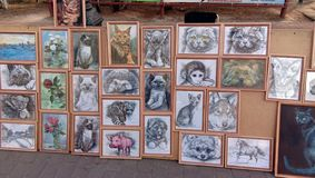 Portraits of animals. Dogs, cats, Raccoon, Monkey in a frame. Selling on the street of his work. royalty free stock image