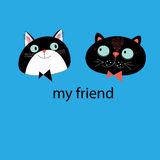 Portraits of cats friends Stock Photography