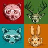 Portraits d'animal de hippie Images stock