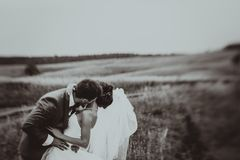 Portraits de mariage de jeunes mariés Photos stock