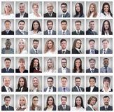 Portraits of a group of successful employees isolated on white royalty free stock image