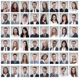 Portraits of successful young businessmen on white royalty free stock images