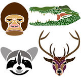 Portraits of various wild animals: gorilla, crocodile, raccoon a Royalty Free Stock Photos