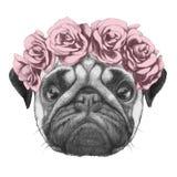 Portrat del perro del barro amasado con la guirnalda principal floral Fotos de archivo