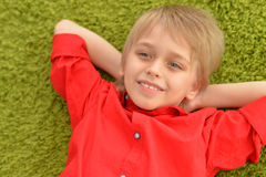 Portrat Of Blonde Little Boy Royalty Free Stock Images
