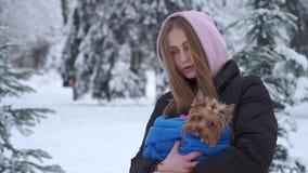 Portret ładna młoda dziewczyna trzyma Yorkshire teriera zawijający w błękitnej koc na rękach w zima śnieżystym parku zbiory