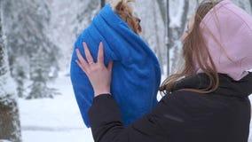 Portret ładna młoda dziewczyna z długie włosy mieniem Yorkshire terier zawijający w błękitnej koc na rękach w zimie zbiory wideo