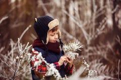 Portret śliczna chłopiec w ciepłym zima lesie zdjęcie royalty free