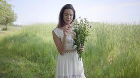 Portret śliczna młoda dziewczyna jest ubranym długą białą lato mody sukni pozycję na polu z brunetka włosy leisure zdjęcie wideo