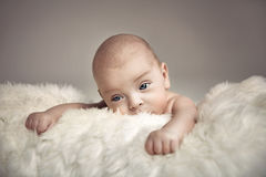 Portret śliczna nowonarodzona chłopiec fotografia royalty free