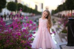 Portret śliczna piękna dziewczyna z długie włosy w princess sukni obrazy royalty free