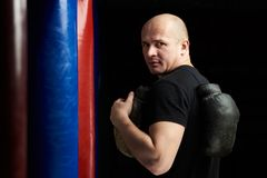 Portret śmiały bokser obrazy royalty free