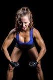 Portret agresywny żeński bokser napina mięśnie Obraz Stock