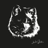 Portret arktyczny lis w jeden kolorze ilustracji
