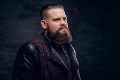 Portret brodata samiec na popielatym winiety tle Obraz Stock