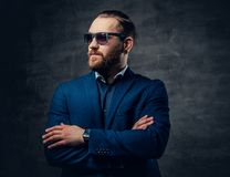 Portret brodata samiec w okularach przeciwsłonecznych i przebijanie w nosie Fotografia Stock