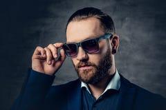 Portret brodata samiec w okularach przeciwsłonecznych i przebijanie w nosie Obraz Stock