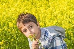 Portret chłopiec Obraz Stock