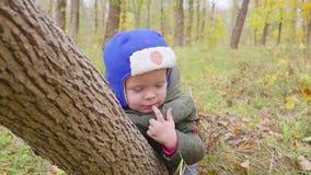 Portret chłopiec która bawić się w jesieni ono uśmiecha się i parku Chłopiec spojrzenia out od drzewnego bagażnika za zbiory wideo