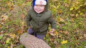 Portret chłopiec która bawić się w jesieni ono uśmiecha się i parku Chłopiec spojrzenia out od drzewnego bagażnika za zdjęcie wideo