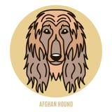 Portret chart afgański royalty ilustracja
