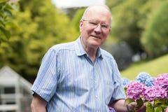 Portret Cieszy się ogród W Domu Starszy mężczyzna zdjęcia royalty free