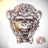 Portret de croquis de singe Image libre de droits