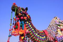Portret dekorujący wielbłąd przy Pustynnym festiwalem, Jaisalmer, India Zdjęcia Stock