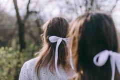 Portret die van twee mooie jonge zusters in de groene de lentetuin, op het gebied in de zonneschijn koesteren Hebbend pret samen, royalty-vrije stock fotografie