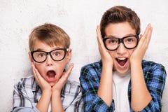 Portret dwa młodego brata Zdjęcie Stock