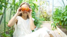 Portret dzieciak z dużym pomidorem w rękach w szklarni zdjęcie wideo