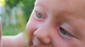 Portret dziecko na naturze ludzka natura koncepcja szczęśliwa rodzina zbiory wideo