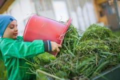 Portret dziecko wywala trawy troszkę Zdjęcia Stock