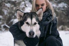 Portret dziewczyna z dużym Malamute psem na zimy tle Zdjęcia Stock