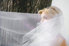Portret dziewczyna z przesłoną Fotografia Royalty Free
