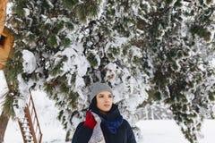 Portret dziewczyny pozycja pod śnieżystą sosną fotografia stock