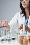 Portret Żeńskiego Lab Pięcioliniowy Rozdawać Z kolbami i Swój substancjami Zdjęcie Stock
