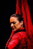 Portret Flamenco klasyczny Andaluzyjski tancerz Zdjęcia Royalty Free