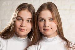 Portret gemelo de las hermanas Fotografía de archivo