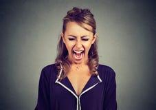 Portret gniewny sfrustowany młodej kobiety krzyczeć zdjęcia royalty free